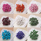 40X Mini Christmas Foam Frosted Fruit Artificial Holly Berry Flower Home Decor