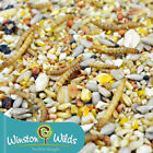 Seed and Mealworm Wild Bird Food. No Wheat + Fruit - Finest Grade, Winston Wilds
