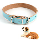 Collier chien cuir vrai reglable harnais chat animaux dog collar 5 couleur