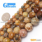 Natural Crazy Lace Agate Gemstone Faceted Round Beads For Jewelry Making 15""