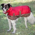 Fashion Pet Red Outdoor Dog Horse Blanket Dog Coat  in sizes Small to X-Large