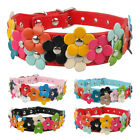 Fancy Flowers Studded Pet Dog Collars for Dogs Small Medium Pink Black Red Blue