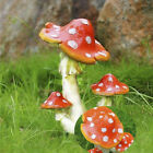 Внешний вид - Mushroom Toadstool Miniature Fairy Garden Terrarium Figurine Dollhouse Decor NT5