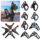 No Pull Adjustable Large Medium Dog Pet Vest Harness Quality Nylon From S to XL