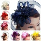 HOT Tulle Feather Net Fascinators Hats Wedding Headpiece Birdcage Veils Headwear