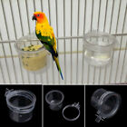 Mini Clear Parrot Food Water Bowl Feeder Acrylic Birds Pigeons Cage Cup Feeding