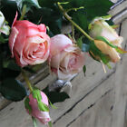 Artificial Bulgaria Roses 1 Branch (2 Heads) 67cm Pink White Blue Light Blue