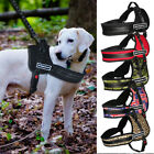 K9 Working Dog Harness No Pull Sports Training for Medium Large Breed Pitbull