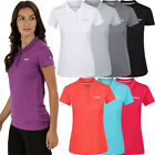 Regatta Womens/Ladies Maverick IV Quick Dry Polyester Pique Polo Shirt