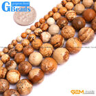 "Natural Picture Jasper Gemstone Faceted Round Beads For Jewelry Making 15"" GB"