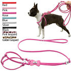 PU Leather Dog Cat Walking Harness and Leads Adjustable Pink Red Black Blue S M