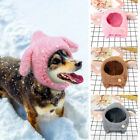 Soft Fleece Cat Dog Bunny Hat Costume Cute Winter Warm Rabbit Ears Hat Outfit