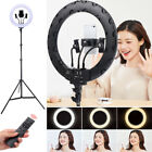 "14"" Photography LED Selfie Anchor Light Ring Lighting Dimmable Usb Charging"