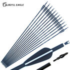 """28""""/30""""/31""""Archery Carbon Arrows Hunting for Recurve Compound Bow Arrow Shooting"""
