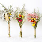 Natural Dried Flower Gypsophila Bouquet Diy Wedding Party Floral Art Home Decor