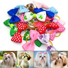 20/500pcs Xmas Pet Cat Dog Hair Bows with Rubber Bands Grooming Accessory Yorkie