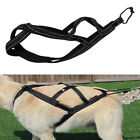 Dog Weight Pulling Harness for Pitbull Competition Sledding Training X-Back Vest