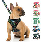 Printing Pet Dog Harness with Leash set Mesh Padded Vest for Small Medium Dogs