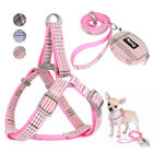 Step In Dog Harness+Leash+Bag for Walking Pet Puppy Cat Strap Vest Jack Russell