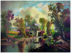 Decor Nature Poster. Graphic Art. Country House painting. Home Wall Design. 1195