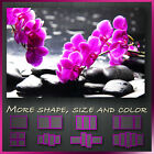 ' Orchid Spa Stone Zen '  Modern Abstract Contempory Wall Art Framed Canvas Box