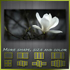 ' White Magnolia Flower ' Floral Modern Art Canvas Deco Wall More Size & Color