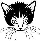 Cute Cat Sticker Wall Art Decal, Ideal for Walls, Furniture & vehicles Ref:008