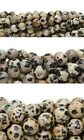 Lot of 10, 16 Strands of Round Spotted Dalmatian Jasper Natural Gemstone Beads