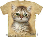 Child BROWN STRIPED KITTEN Cat The Mountain T Shirt Sizes  4 -14 Years 15-3466