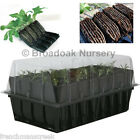 DEEP ROOTRAINERS PROPAGATOR SYSTEM, Root Trainers, Propagator Lid, Seed Tray...