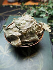 Ethical British Tree Leave for Incense & Spell makings - Wicca, Pagan, Magic