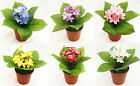 Artificial Flowers Chonodoxa Pot Plant Faux Silk 6 Colours Home