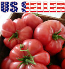 30+ ORGANICALLY GROWN GIANT Mortgage Lifter Tomato Seeds Heirloom Up to 2lbs