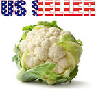 100+ ORGANICALLY GROWN Snowball Self-Blanching Cauliflower Seed Heirloom NON-GMO
