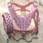 Pink Leather Dog Harness Collar Leash SET spike studs Pit Bull Terrier Mastiff