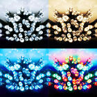 SUPER BRIGHT LED CHRISTMAS LIGHTS - STATIC 600 BULBS XMAS - INDOOR OR OUTDOOR