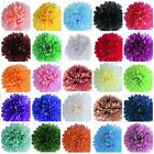 Wedding Party Hanging Tissue Paper Pom Pom Lantern Decoration Balls Mixed Sizes