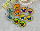12mm 16mm 20mm cab Handmade Red Blue Green butterfly Photo glass cabochon 12B020