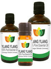 100% Natural Ylang Ylang Essential Oil - Multi Size, FREE P&P (Aromatherapy)