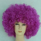 Unisex Clown Wig Circus Funny  Fancy Party Dress Accessory Stag Do Fun Joker