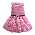 Kids Bows Girl Princess Pageant Wedding Bridesmaid Party Communion Tulle Dress