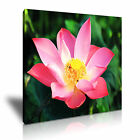 FLOWER Lotus Canvas Framed Printed Wall Art 5 ~ More Size