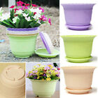 Plastic Flower Vegetable Planters Pot with Tray Home Garden Decor Hot PO