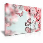 Butterfly Flower Canvas Framed Print 10 ~ More Size