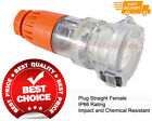 Industrial Female Socket 4 Pin 10A 20A 32A IP66 Straight Suits Plug Switchgear