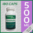 FORSKOLIN Coleus Forskohlii Burn Fat 20% Extract 500mg 180Caps 3Month Supply