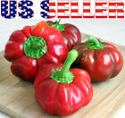 30+ ORGANICALLY GROWN  Sheepnose Pimento Sweet Pepper Seeds Heirloom NON-GMO