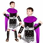 BOYS KIDS ROMAN GLADIATOR GREEK WARRIOR SOLDIER CHILDRENS FANCY DRESS COSTUME