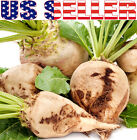 50+ ORGANICALLY GROWN Sugar Beet Seed Heirloom NON-GMO Sweet White Cold Tolerant