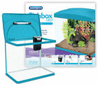 interpet fish box